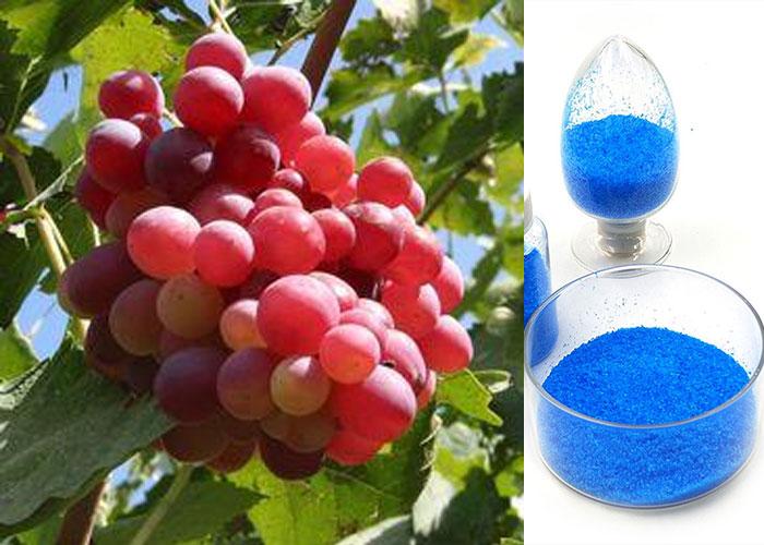 copper sulfate pentahydrate Yosoar (5)